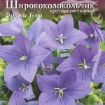 Платикодон (Ширококолокольчик) крупноцветковый Фуджи Блю