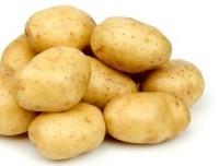Картофель Лина  (среднеранний) сетка 4 кг.